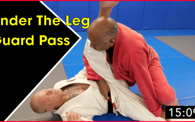 Under The Leg Guard Pass